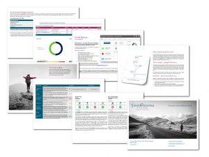 Precision Report 2019 Landscape (002)